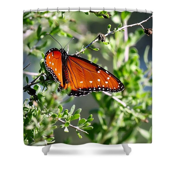 Queen On Creosote Shower Curtain
