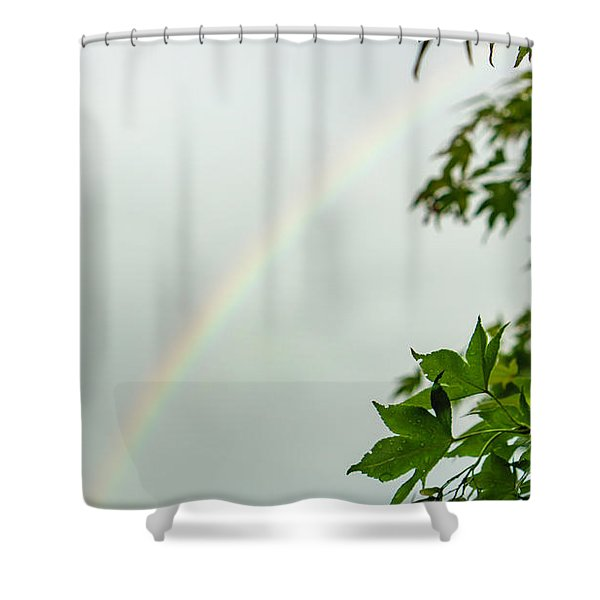Rainbow With Leaves In Foreground Shower Curtain