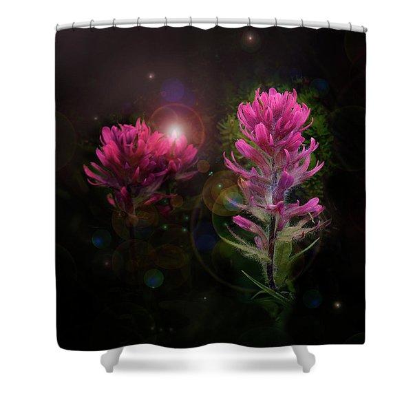Rainier Ipb Shower Curtain