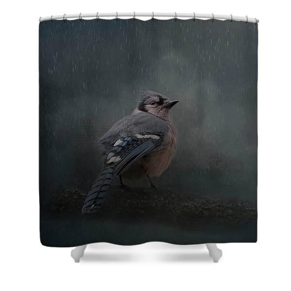 Rainy Day Blues  Shower Curtain