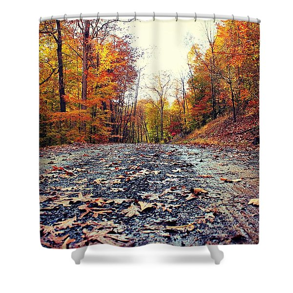 Rainy Fall Roads Shower Curtain