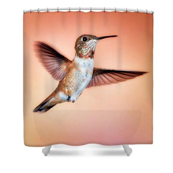 Rambunctious Rufous Shower Curtain