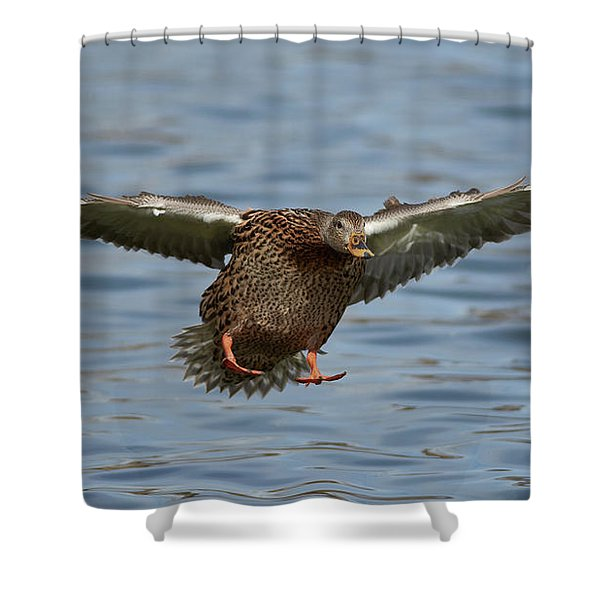 Ready For Landing Shower Curtain