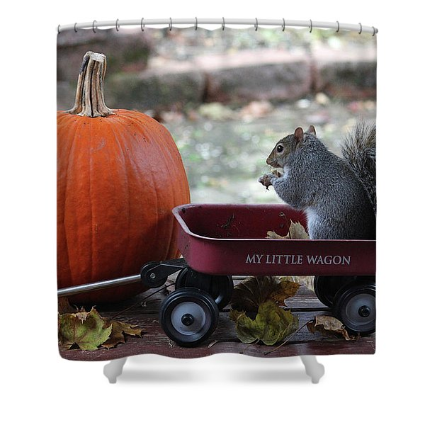 Ready To Ride My Little Red Wagon Shower Curtain
