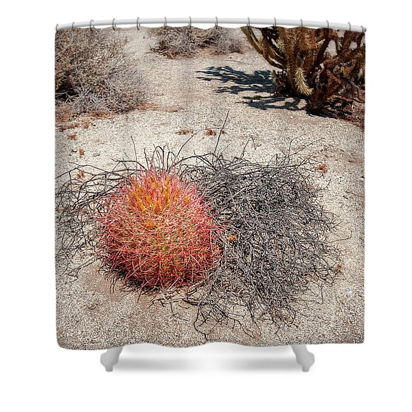 Red Barrel Cactus And Mesquite Shower Curtain