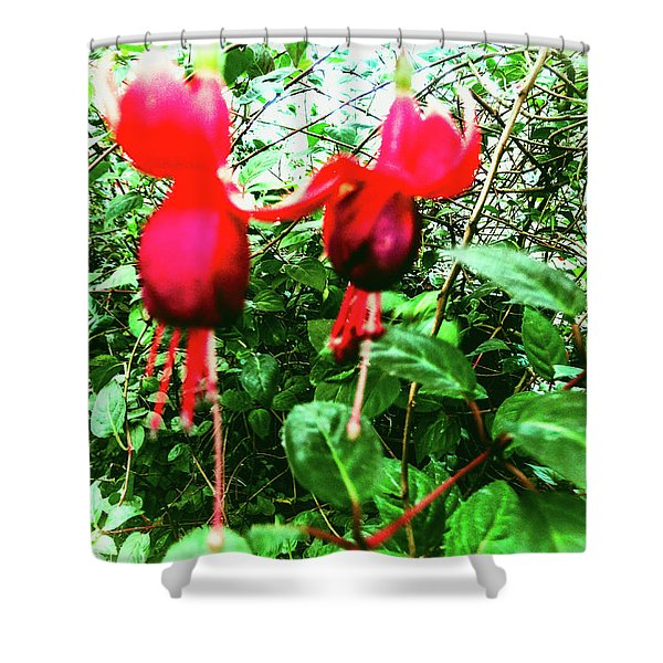 Red Candies Shower Curtain