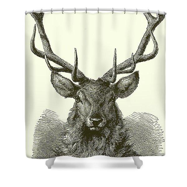 Red Deer Head Shower Curtain