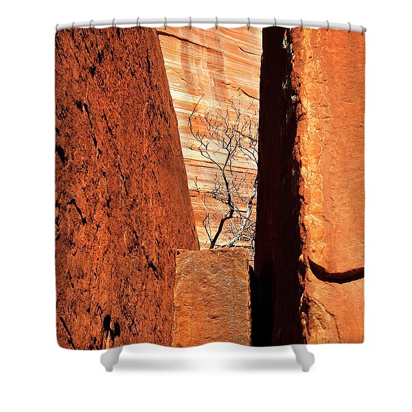 Red Rock Vise Shower Curtain