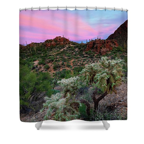 Red Sky Cholla Shower Curtain