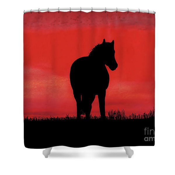 Red Sunset Horse Shower Curtain