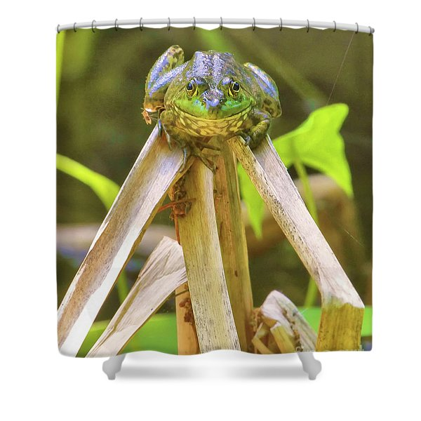 Reeds Bully Shower Curtain