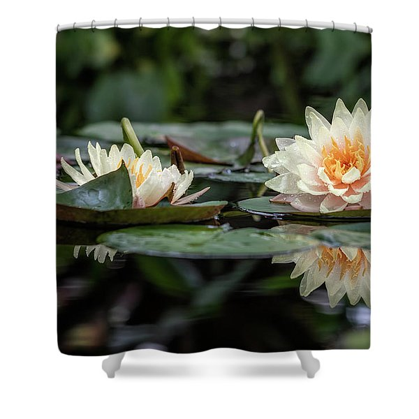 Delicate Reflections Shower Curtain
