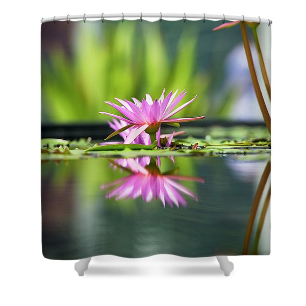 Reflecting Water Lily  Shower Curtain