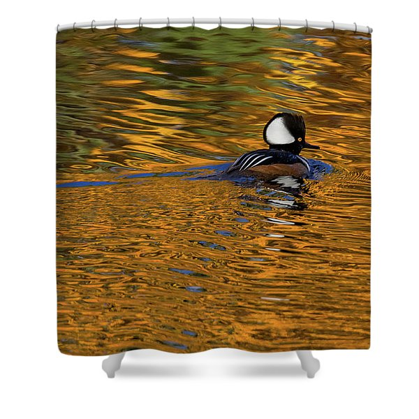 Reflecting With Hooded Merganser Shower Curtain