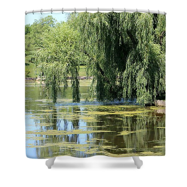 Reflections From Mother Willow Shower Curtain