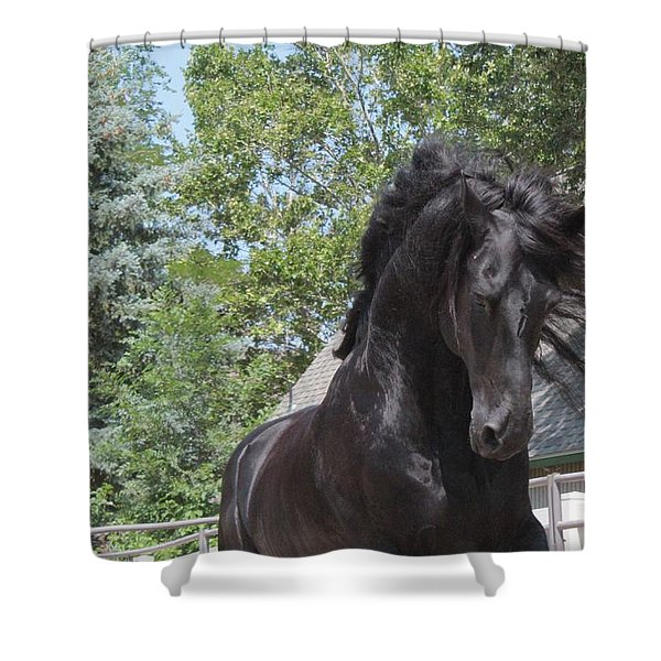 Regal Power Shower Curtain