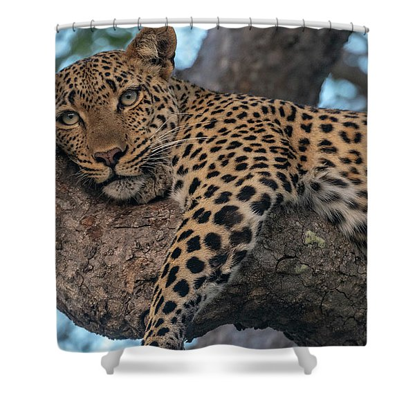 Relaxed Leopard Shower Curtain