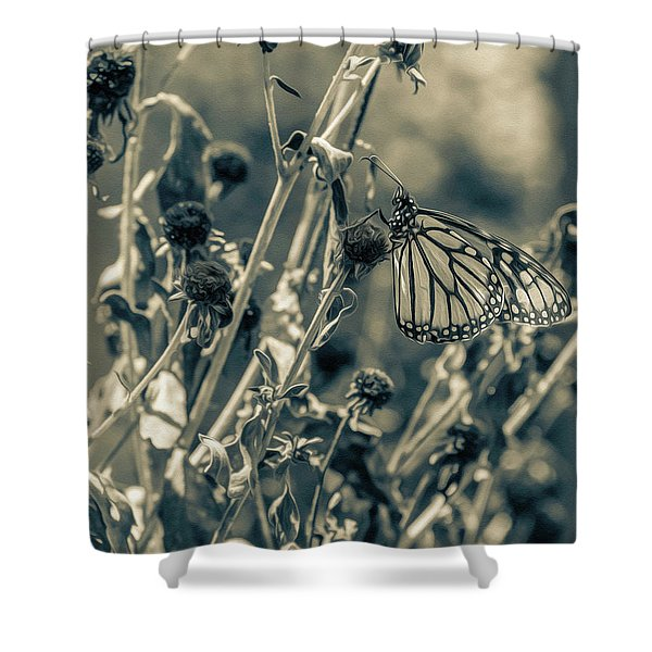 Resting Butterfly Bw Shower Curtain