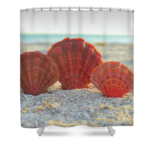 Restore The Soul Shower Curtain