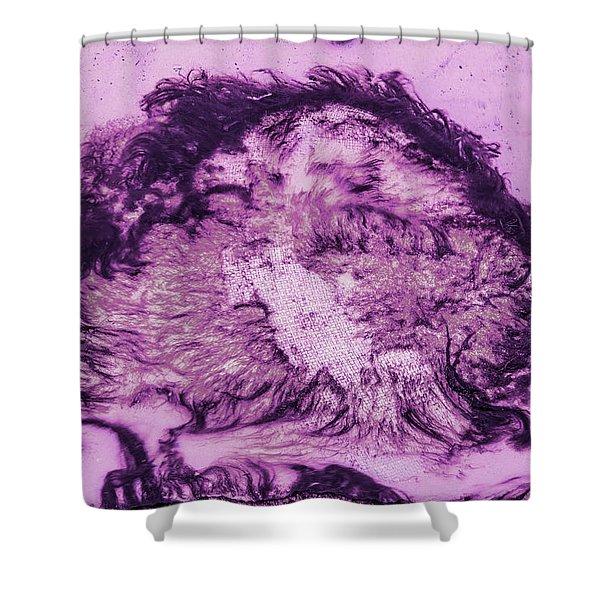 Rhapsody In Purple Shower Curtain