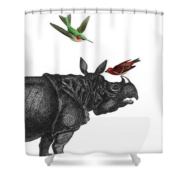 Rhinoceros With Birds Art Print Shower Curtain