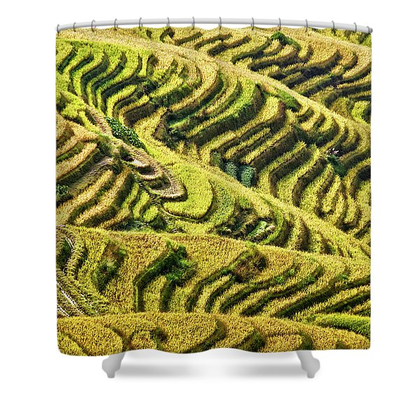 Rice Terraces In China Shower Curtain
