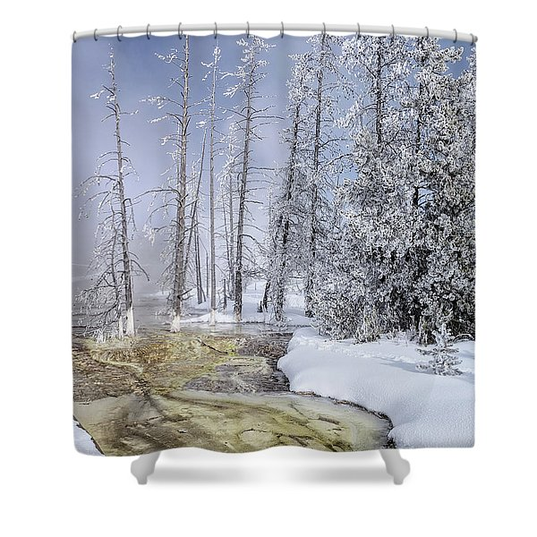 River Of Gold - Jo Ann Tomaselli Shower Curtain