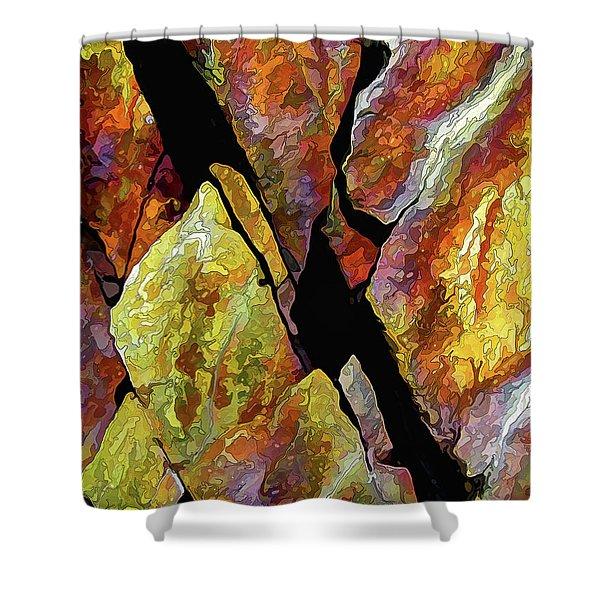 Rock Art 17 Shower Curtain