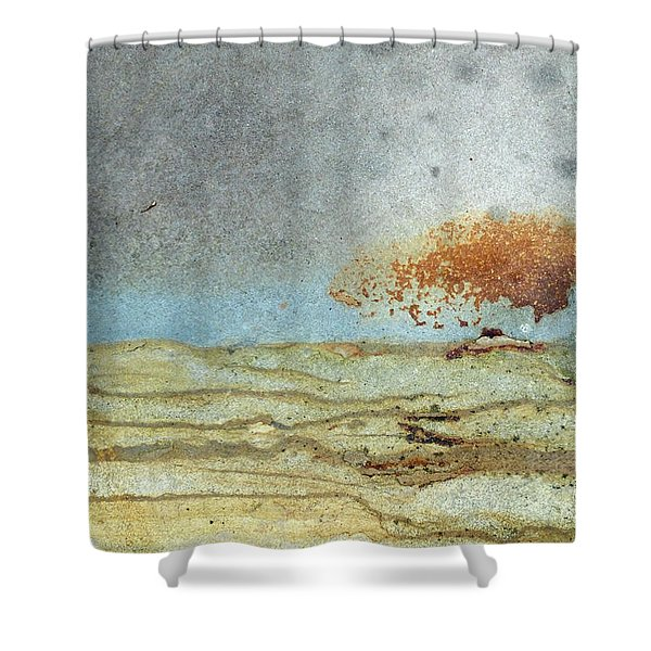 Rock Stain Abstract 1 Shower Curtain