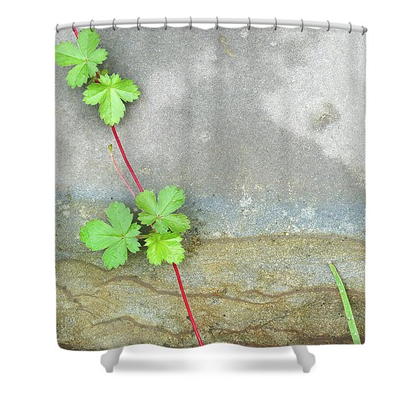 Rock Stain Abstract 4 Shower Curtain