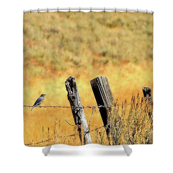 Rocky Mountain Blue Bird Shower Curtain