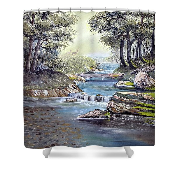 Shower Curtain featuring the painting Rocky Stream by Deleas Kilgore