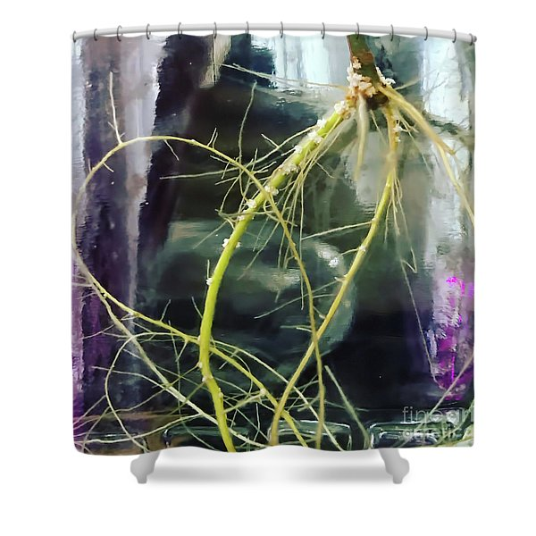 Root Porn Shower Curtain