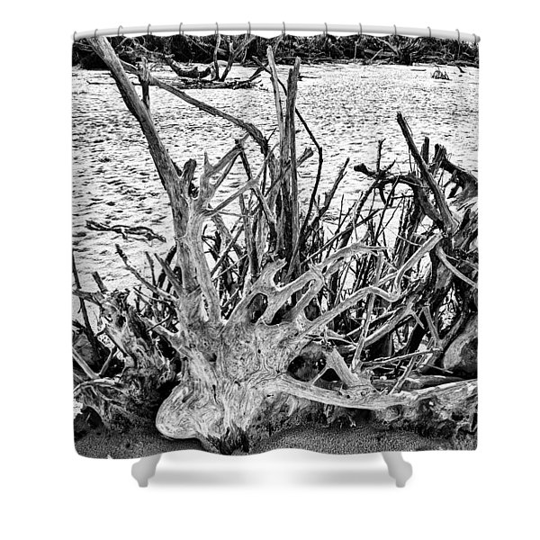 Rooted In Black And White Shower Curtain