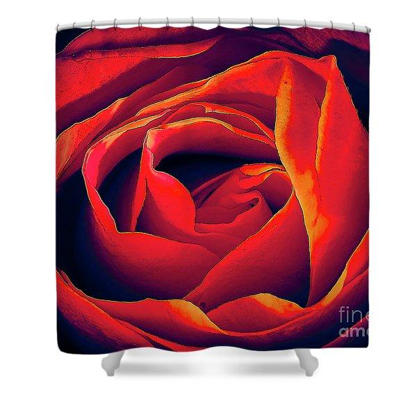 Rose Ablaze Shower Curtain