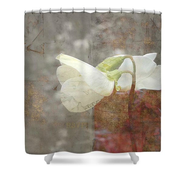 Rsvp Shower Curtain