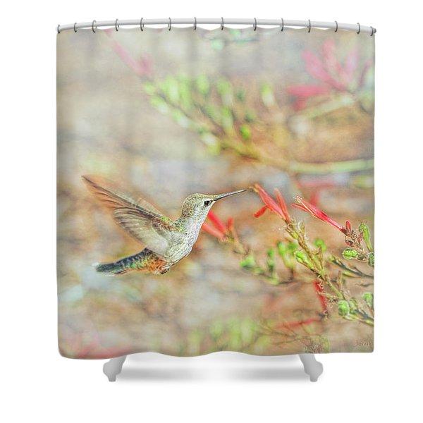 Rufous Hummingbird In The Arizona Garden Shower Curtain