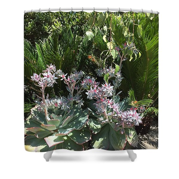 Shower Curtain featuring the photograph Rustic by Cynthia Marcopulos