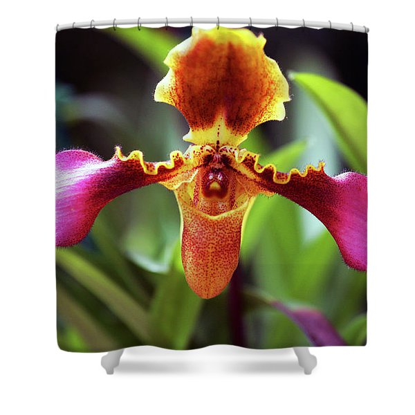 Sad Orchid Shower Curtain