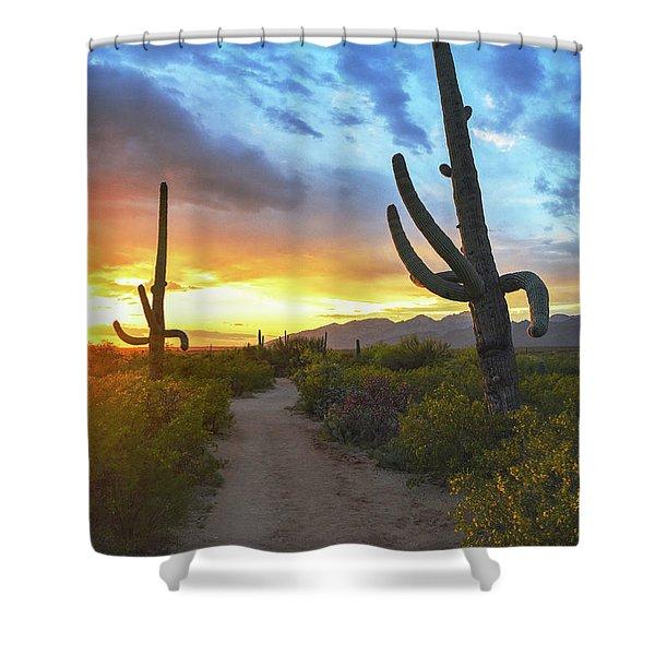 Saguaro Trail Shower Curtain