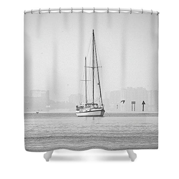 Sail Out Of Sarasota Shower Curtain