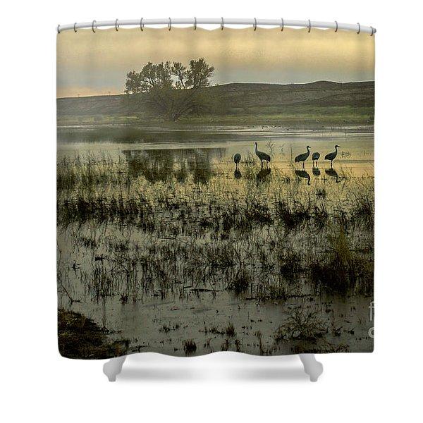 Sandhill Serenity Shower Curtain