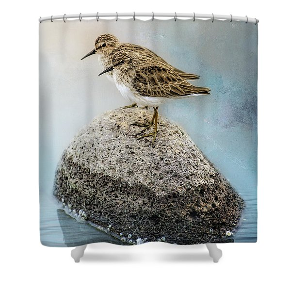 Sandpipers On A Rock Shower Curtain
