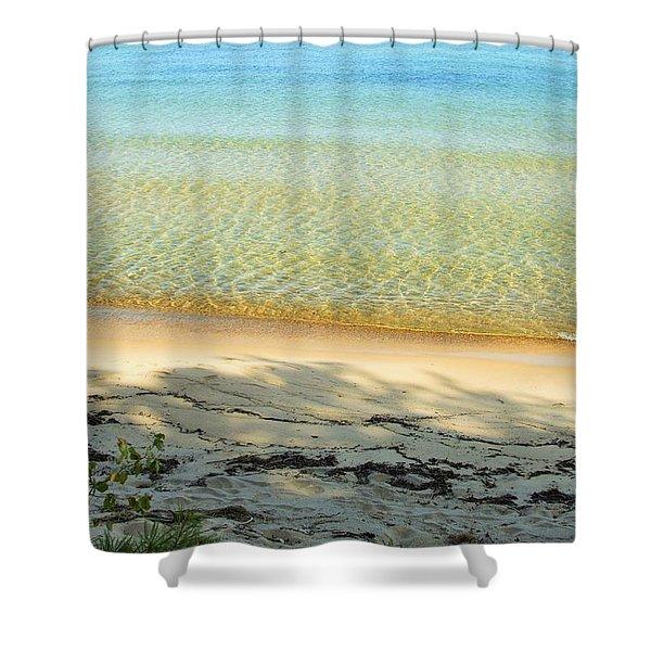 Sandy Blue Shower Curtain