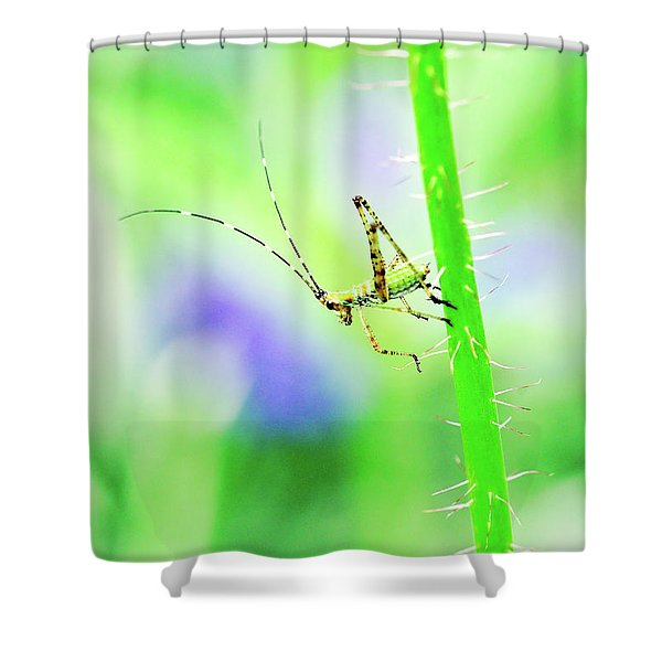 Say Hello To My Little Green Insect Friend Shower Curtain