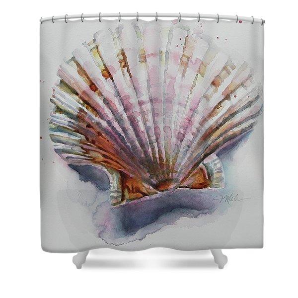 Scallop Seashell Shower Curtain