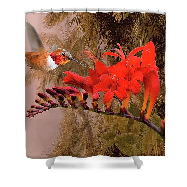 Scarlet Sage And Hummingbird Shower Curtain
