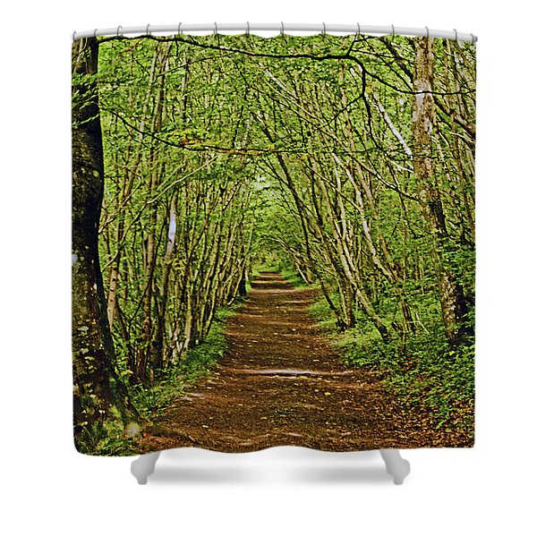 Scotland. Killiecrankie. Path Through The Trees. Shower Curtain