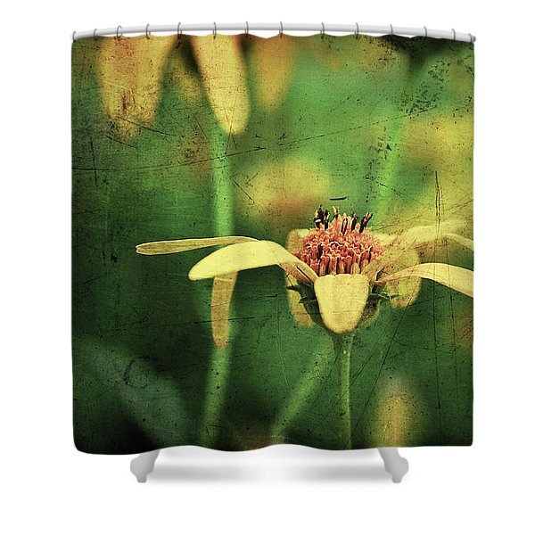 Shower Curtain featuring the photograph Scratched by Michelle Wermuth