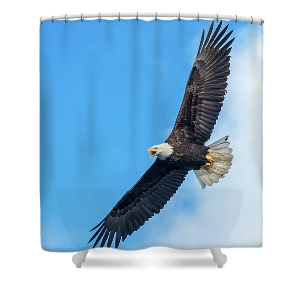 Screaming Eagle #2 Shower Curtain